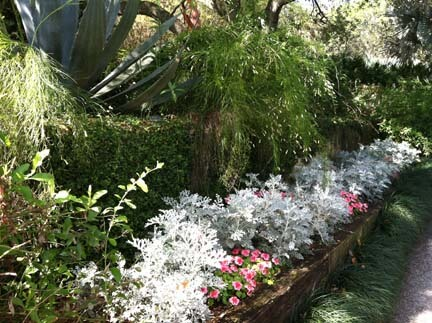 Lovely flowered walkways like this at Bok Tower Gardens