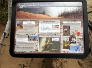 Old_Baldy_Dunes_Sign_IMG_2671