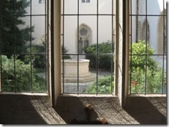 JT Pedersen_Abbey Window_Starbucks_Business
