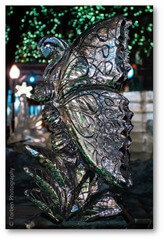 Torben Photography_Plymouth Ice Festival - (3)