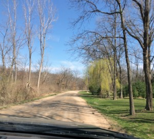 Discovering what's around the corner on an April journey