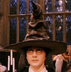 Sorting-hat-on-Harry