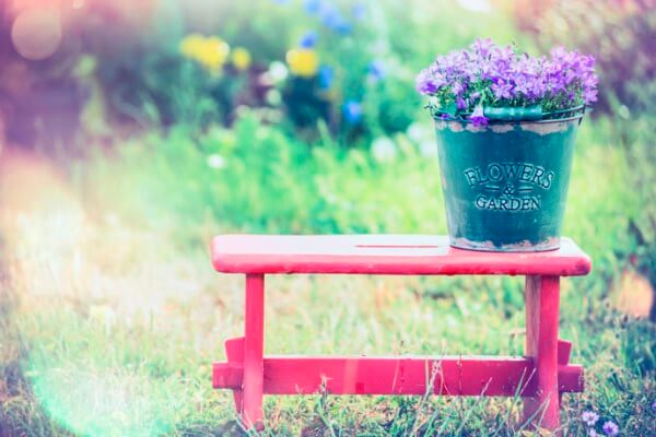 Vintage bucket with garden flowers on red little stool over summer nature background